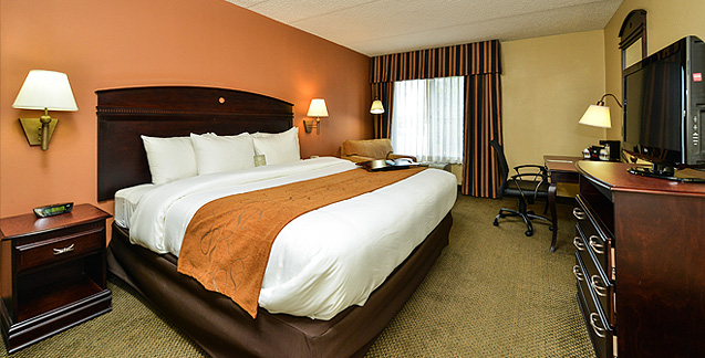 Welcome comfort inn suites somerset for Comfort inn bedding